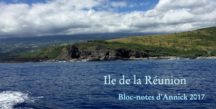 Ile de la Réunion - Bloc-notes d'Annick 2017